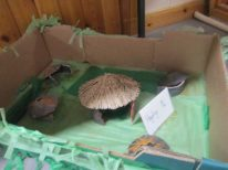 Picts Artefacts 045