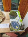 Picts Artefacts 048