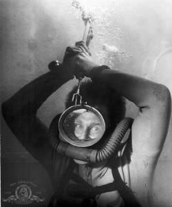 Sea Hunt/Lloyd Bridges