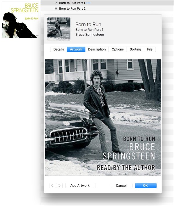 Bruce artwork1