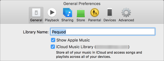Icloud music library on