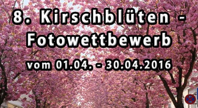 Altstadt Archive Seite 5 Von 5 Kirschbluete Bonn