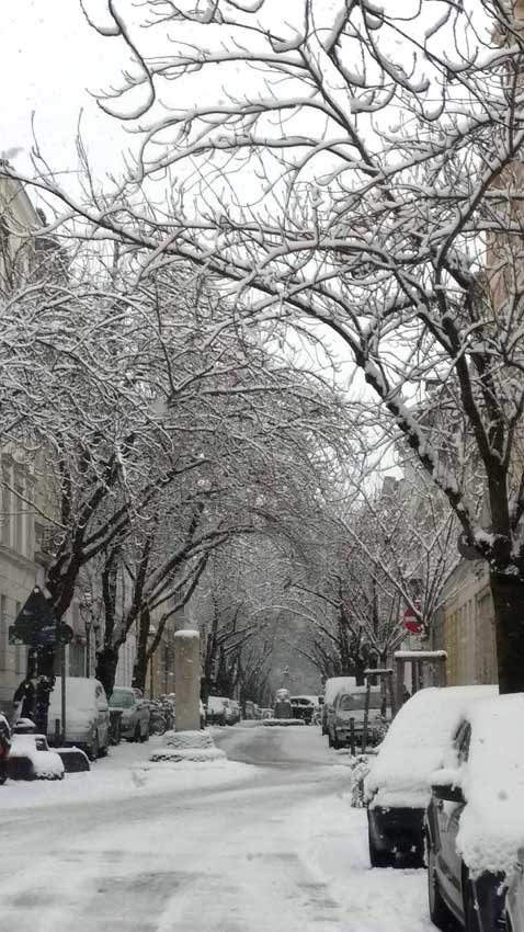 winter-do-31.1.19
