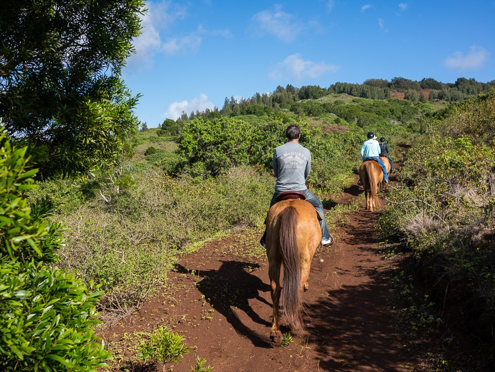 Escaping NYC in Winter by Visiting Hawaii