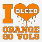 Go Vols! It's football time in Tennessee