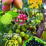 kk Cover May_15
