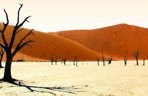 পৃথিবীর মঙ্গল গ্রহ নামিব মরুভূমি । আল জাবির