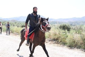 Cretan horses