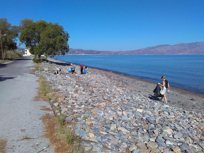 Beach Cleaning in Nopigia