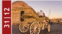 Free carriage tours