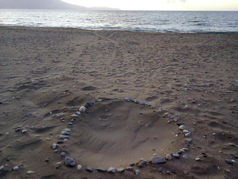 First turtle nests in Kissamos for summer 2018