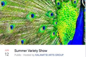 Summer Variety Show