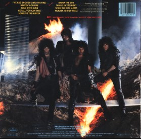 cover_animalize_large_rear