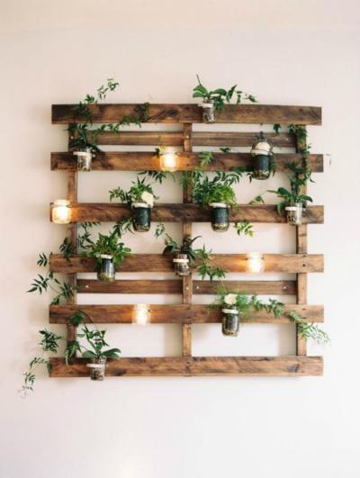 succulent plant decor idea 8