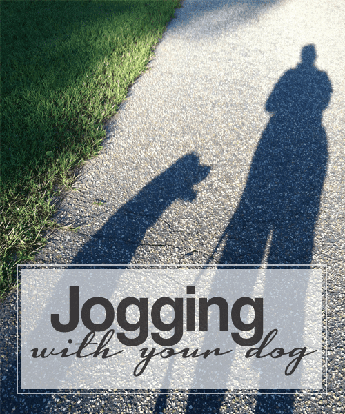 Fitness Friday: My Dog, the Personal Trainer By Ariella Monti