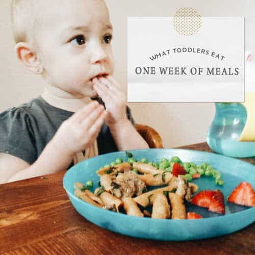 What Toddlers Eat: One Week of Meals