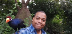 https://i1.wp.com/www.kiswum.com/wp-content/uploads/Huawei_Mate20Pro/IMG_20181028_141938-Small.jpg?resize=274%2C131&ssl=1