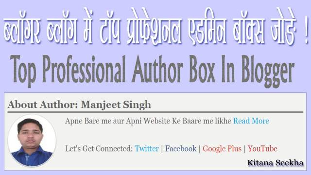 Top Professional Auther Box in Blogger