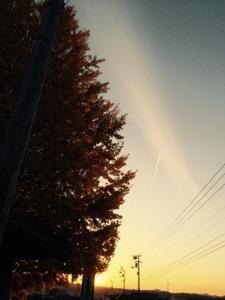 20141128-135047.jpg