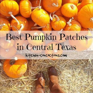 Best Pumpkin Patches in Austin and Central Texas