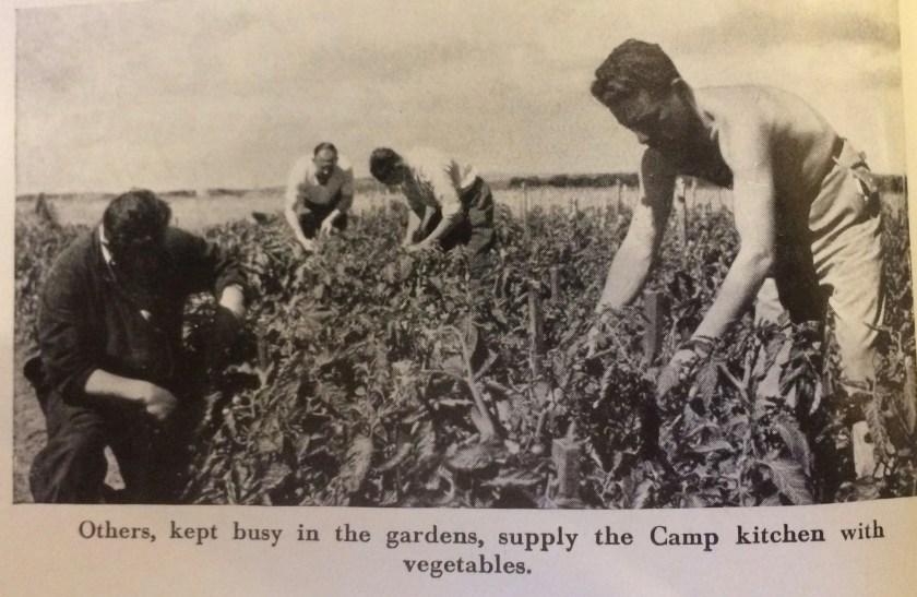 Kitchener camp, Some Victims of the Nazi Terror, Kitchen gardens