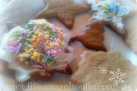 glutenfree gingerbread cookies