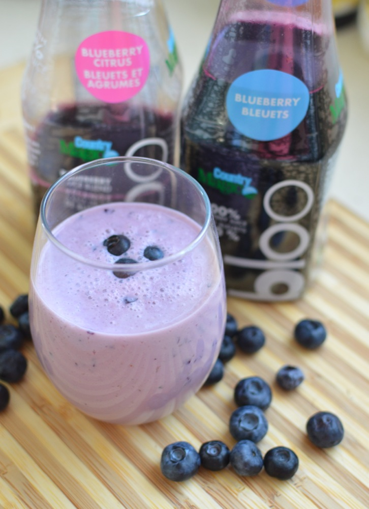 Blueberry Vanilla Yogurt Smoothie Recipe Kitchen Frolic