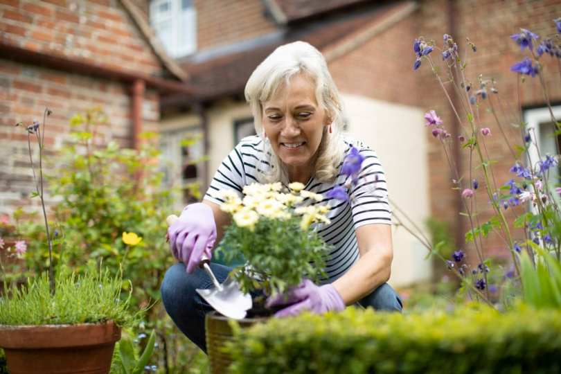 A lady crouched in her garden potting a flower.