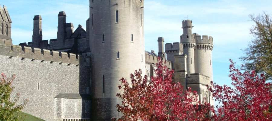 Arundel Castle gardens more popular than ever!