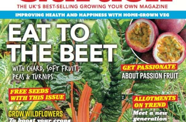 Stay safe at home with your latest Kitchen Garden magazine!
