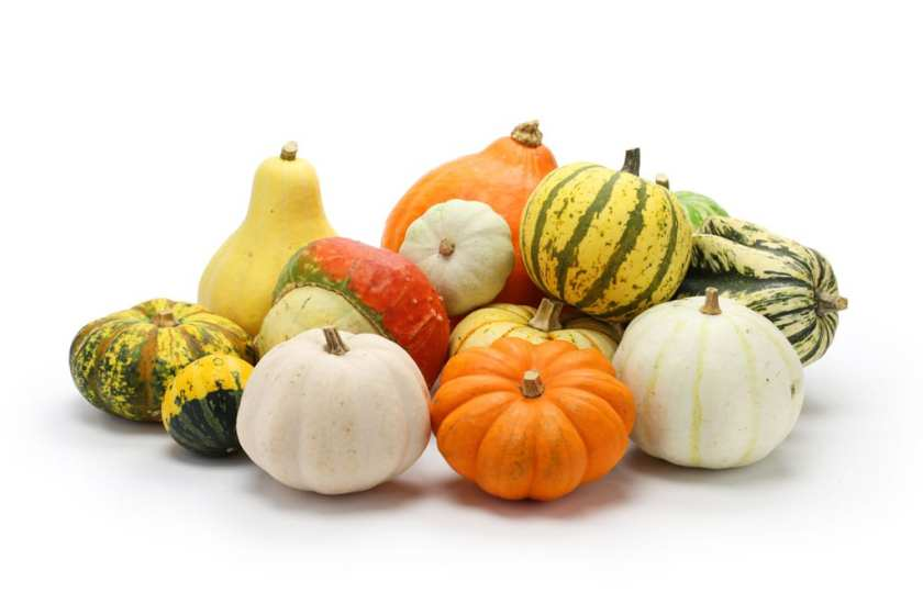 A pile of squashes on a white background.