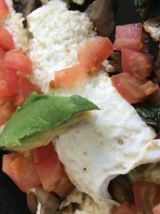 Egg White Meals