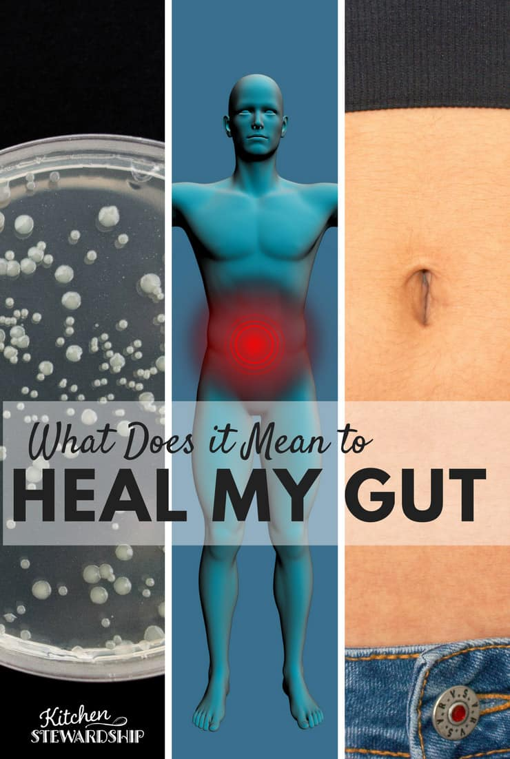 Your Heal Gut How