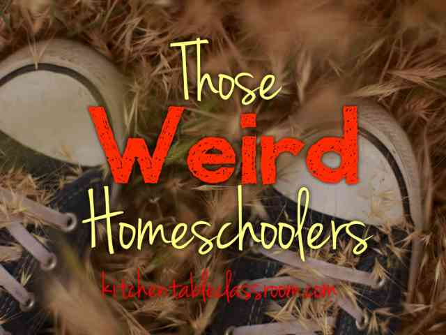 Those Weird Homeschoolers- Once upon time our family joked about weird homeschoolers. When my kids complained too much about public school I teasingly offered to keep them home with me and teach them at the kitchen table. Just the two of us, all day, every day, I would say. Doesn't that sound like fun? Well, now we are the weird homeschoolers.
