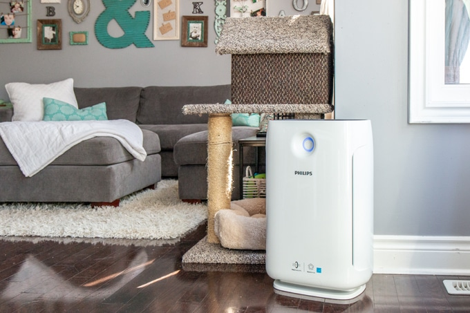 Philips 2000i Air Purifier final thoughts review