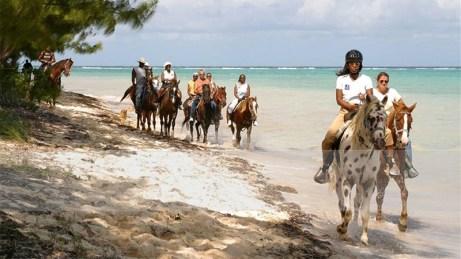 Barkers Beach pony rides