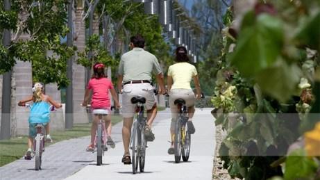 Bike rides - Camana Bay