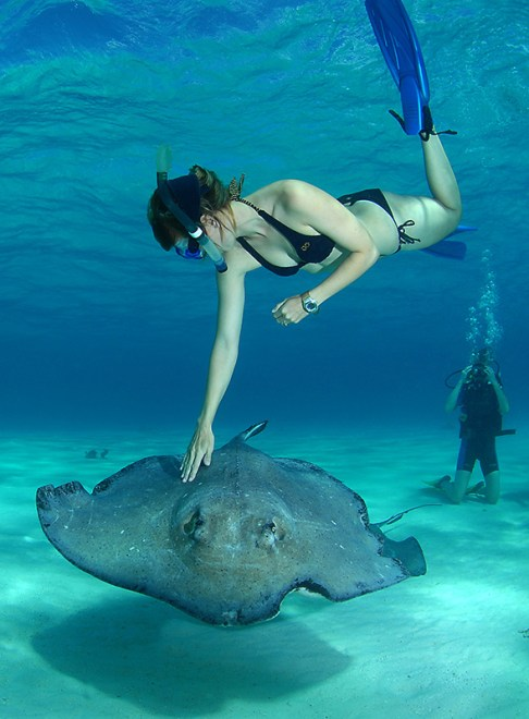 Welcoming waters - Cayman Islands