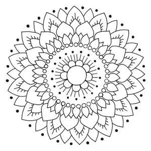 Kaakelitarra, Lotus Valko/Musta (6kpl)