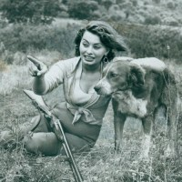 Dames & Dogs #60