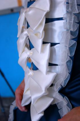 stomacher close-up