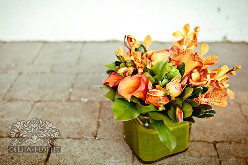 Photo Courtesy of Celsia Florist