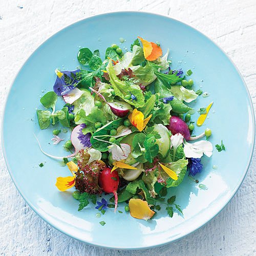 bloom-salad-x