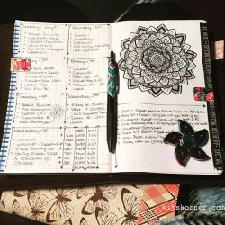 Jul 2-8 in my Mandala (BuJo) Journal…..