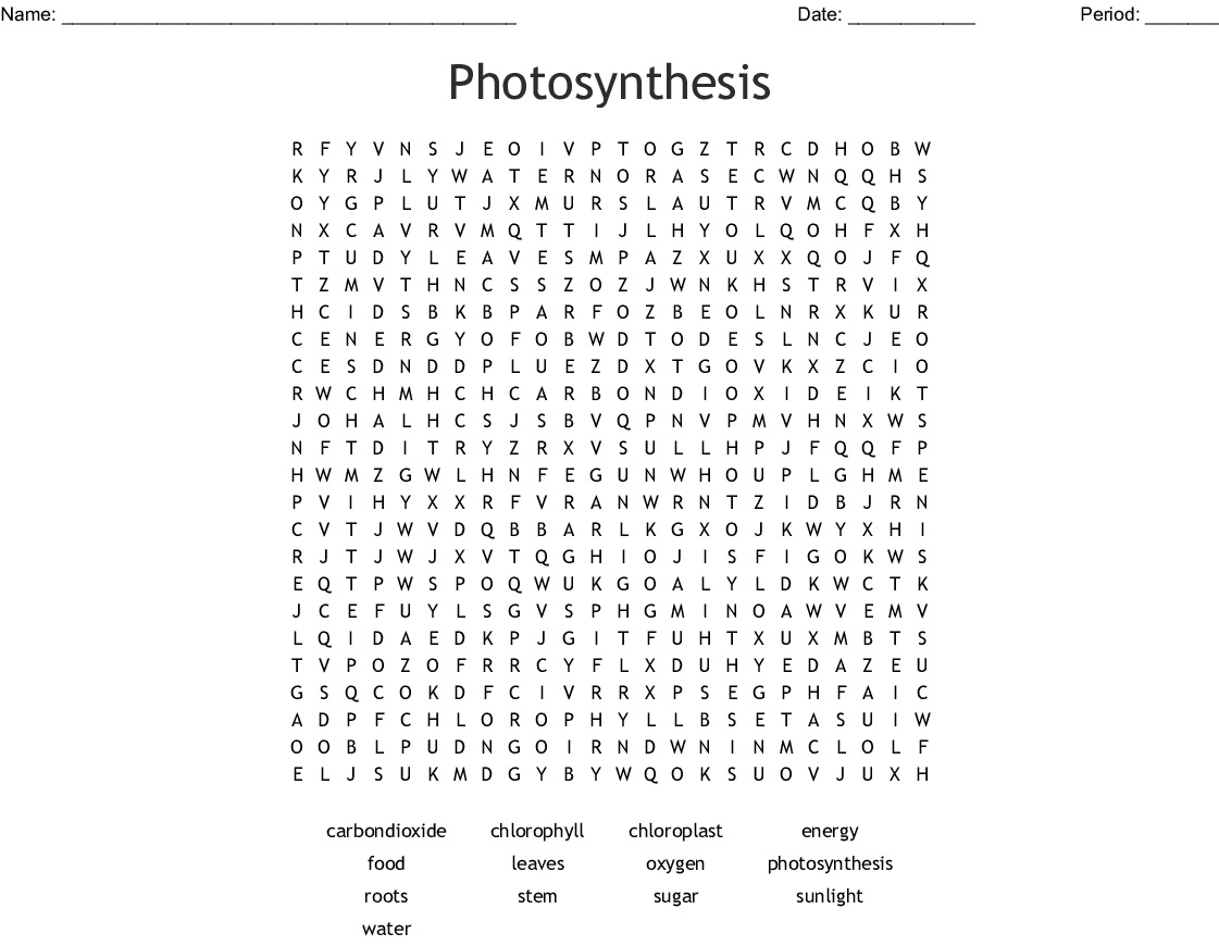 8 Educative Photosynthesis Word Searches