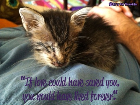 Fly Free, Little Milton - If love could have saved you...