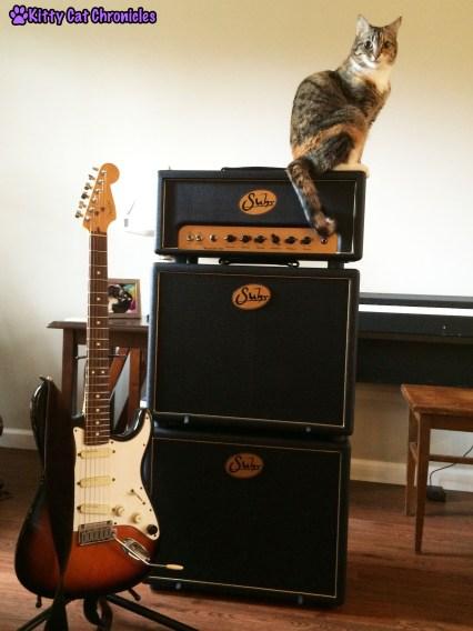 Delilah - Guitar Guru