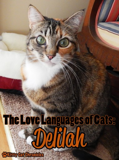 The Love Languages of Cats: Delilah