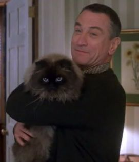 Top 5 favorite Feline Actors: Mr. Jinx from Meet the Parents