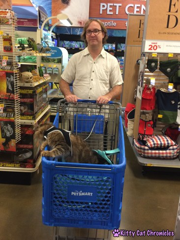4 Destinations Close to Home to Take Your Adventure Cat - Caster at PetSmart